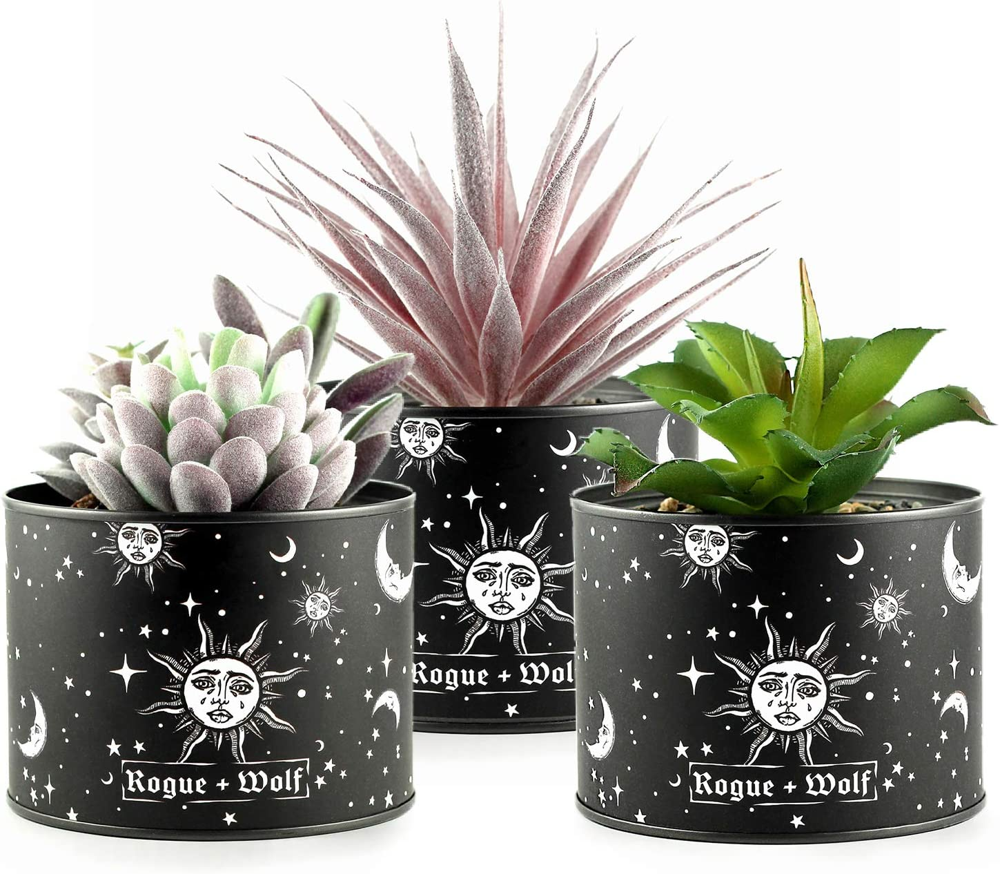 Pot Set of 3 Artificial Succulents in Plant Pots for Boho House Decor by Rogue + Wolf Indoor Faux Fake Succulent Plants in metallic planters Home Office Desk Decor for Women Aesthetic Bedroom