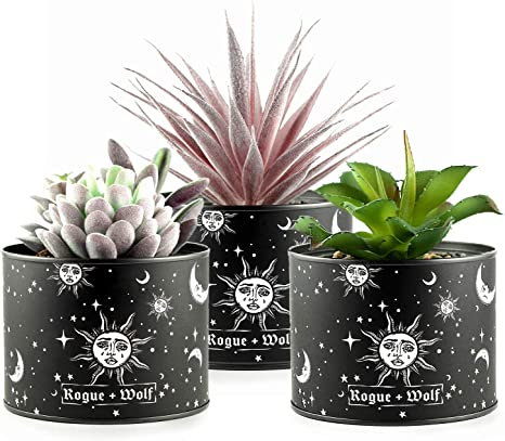 Pot Set Of 3 Artificial Succulents In Plant Pots For Boho House Decor By Rogue Wolf Indoor Faux Fake Succulent Plants In Metallic Planters Home Office Desk Decor For Women