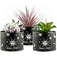 Pot Set of 3 Artificial Succulents in Plant Pots for Boho House Decor Indoor Faux Fake Succulent Plants in Metallic…