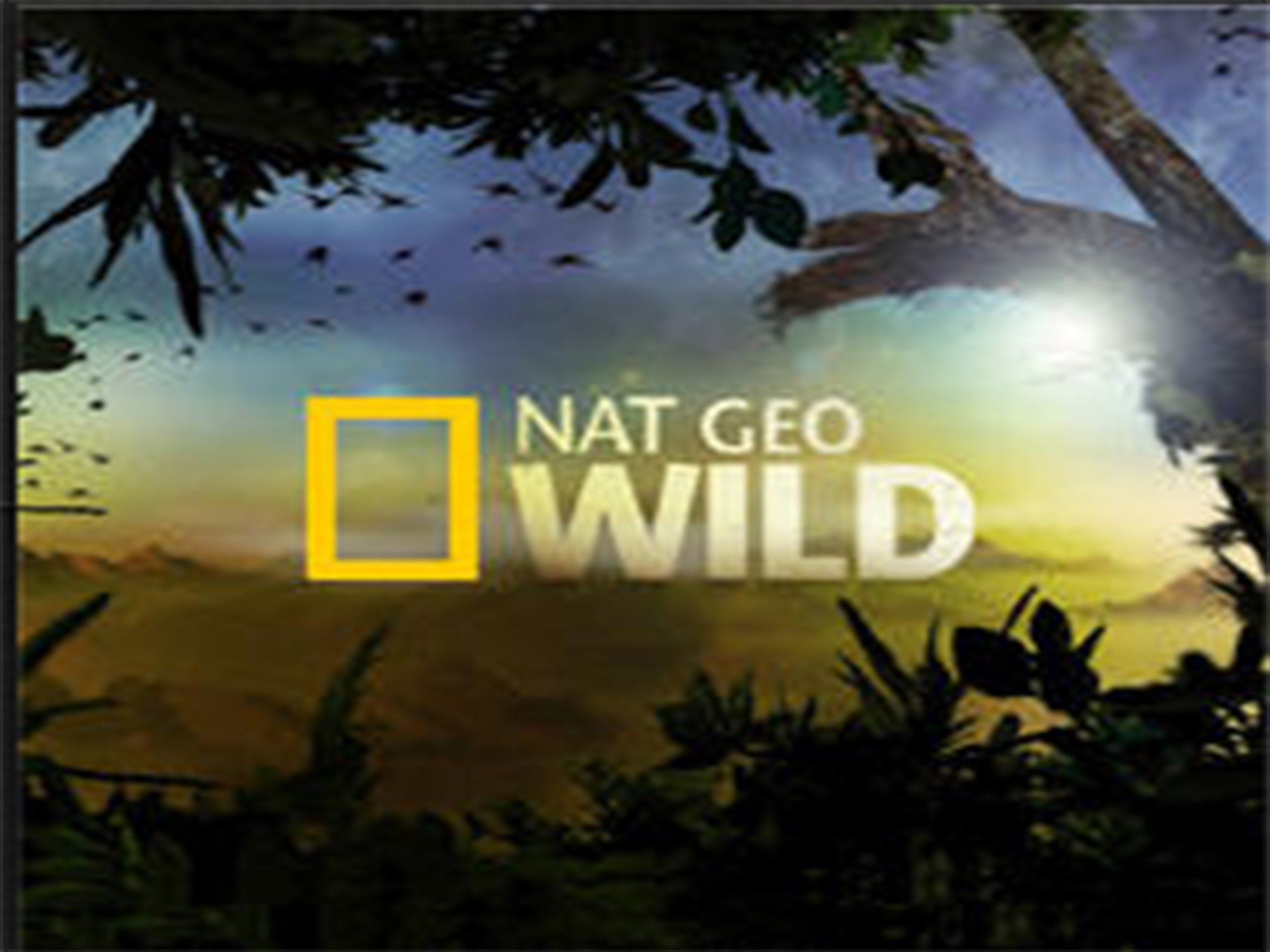 Amazon com: Nat Geo Wild Season 1: Amazon Digital Services LLC