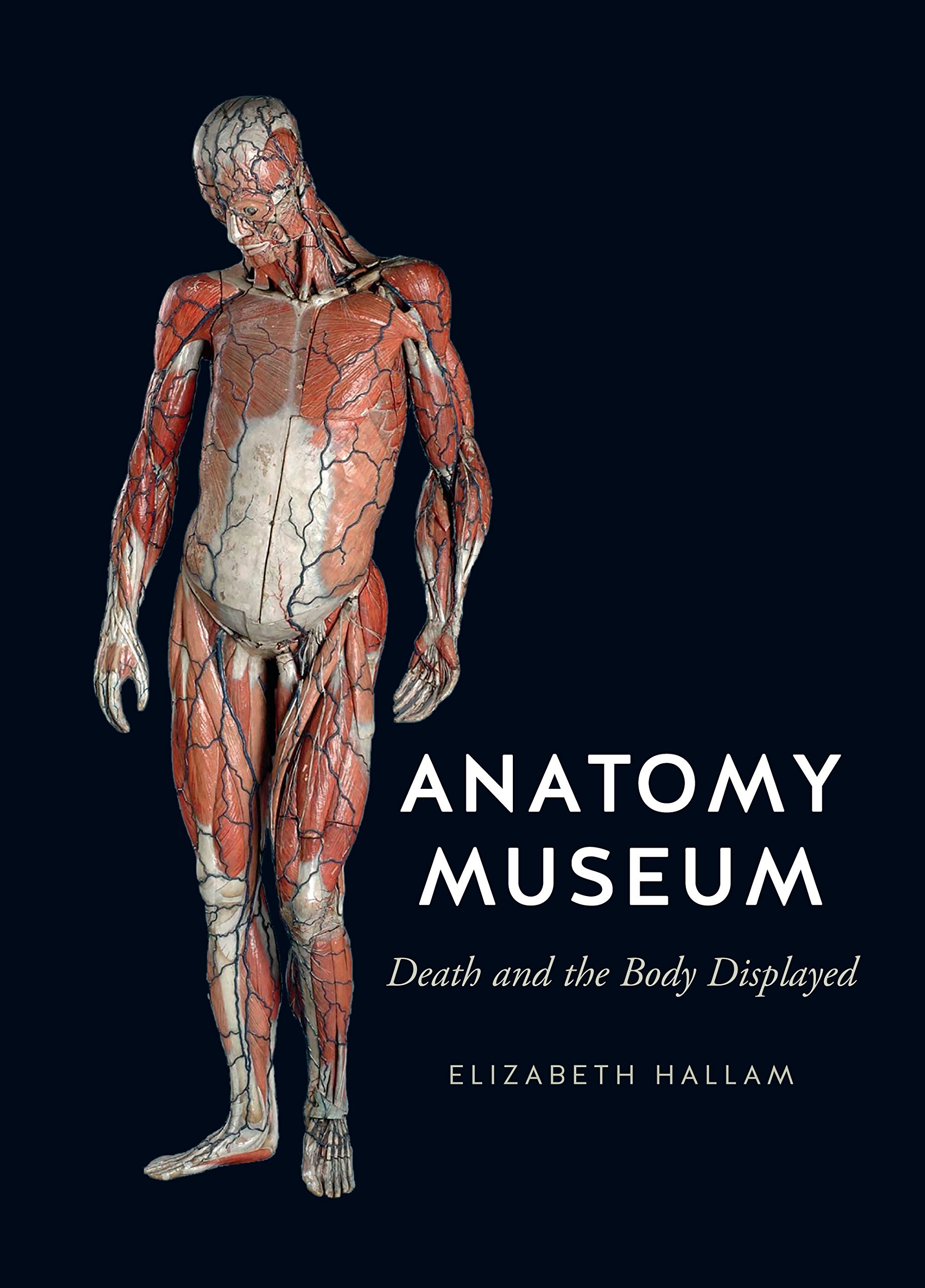 Anatomy Museum Death And The Body Displayed Amazon Elizabeth