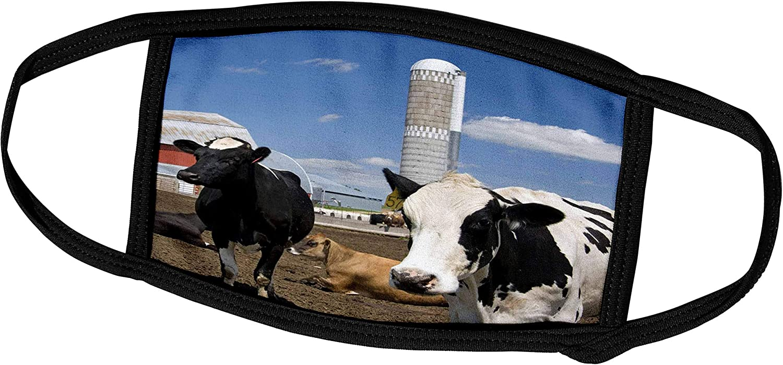 3dRose Cows, red barn, silo, Farm, Wisconsin - US50 DFR0047 - David R. - Face Covers (fc_97170_2)