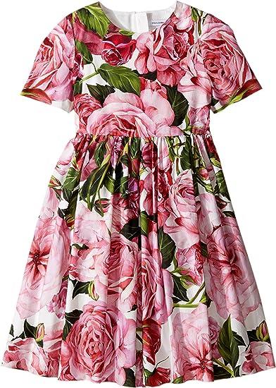 ba3c7657d66b Dolce & Gabbana Kids Baby Girl's Rose Poplin Short Sleeve Dress  (Toddler/Little Kids