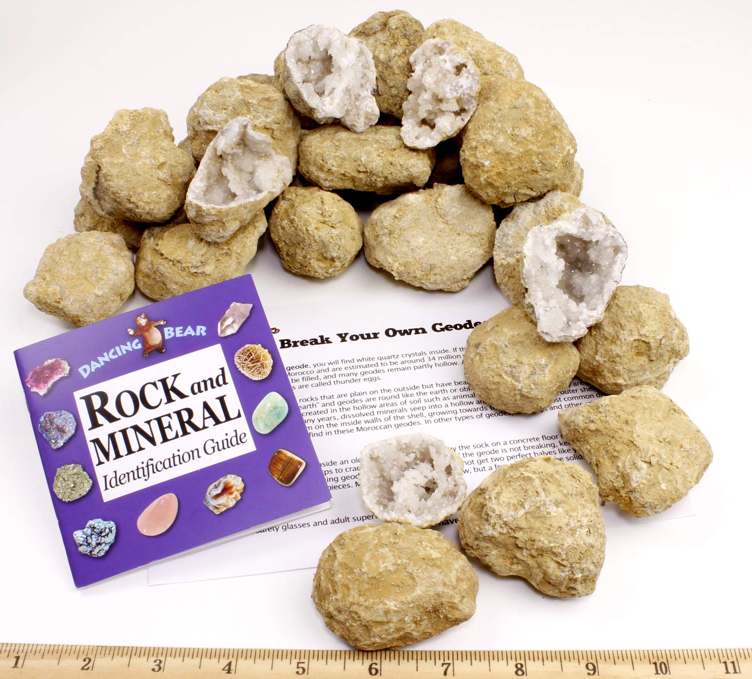 50 Break Your Own Geodes, 90% Hollow Large ( 2-2.5'') Easy Crack Open & Discover Surprise Crystals Inside! Educational Info and Instructions Included, Fun Party Favors & Prizes, Dancing Bear Brand