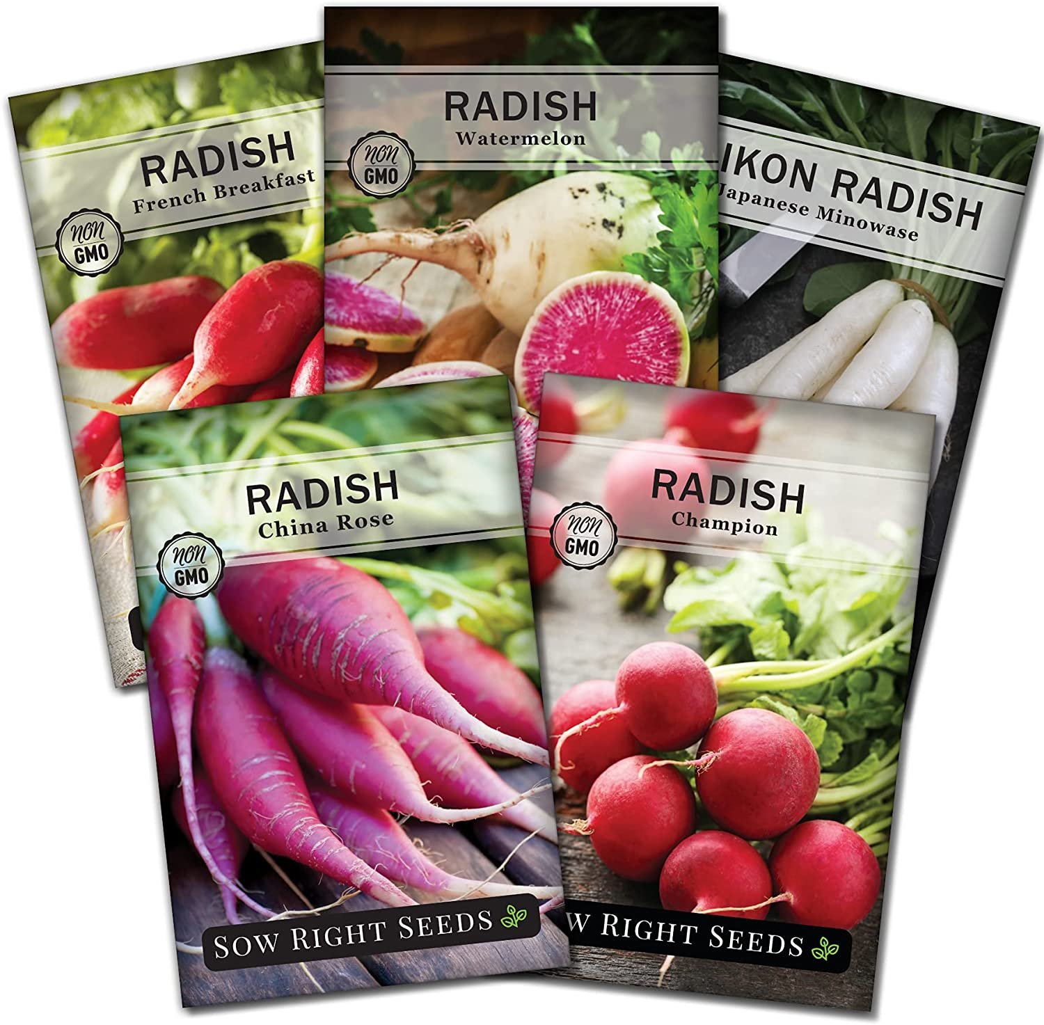 Sow Right Seeds - Radish Seed Collection for Planting - Champion, Watermelon, French Breakfast, China Rose, and Minowase (Diakon) Varieties, Non-GMO Heirloom Seed to Plant Home Vegetable Garden