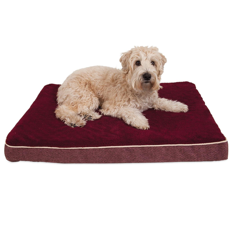 Aspen Pet 80802 Burgundy 27  x 36  x 3.5  Orthopedic Pet Bed