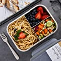BusyMouth 3-Compartment Bento Box