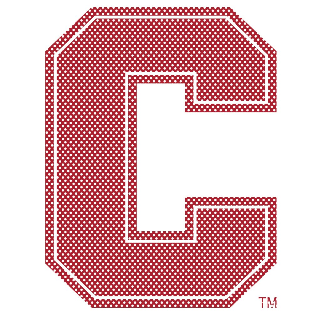One Size NCAA Washington State Cougars 12 Tall Primary Logo Perforated Decal Team Color