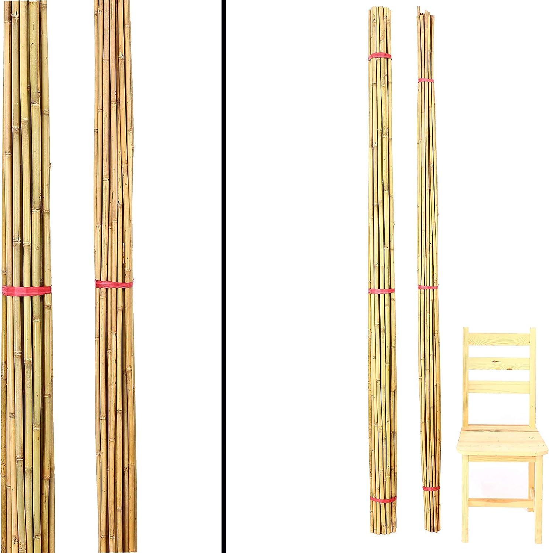 gelblich 15er Set Bambusrohre Tonkin Durch L/änge 240cm 1,6-1,8cm naturbelassen Bambus Rohr Bambus Latten farbige Bambusrohre Bamboo Bambus Halbschale Bambusstangen Bambusstab Rohre aus Bambus