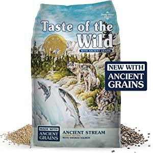Taste of the Wild High Protein, Real Fish, Premium Dry Dog Food with Real Salmon, Superfoods, Probiotics and Antioxidants