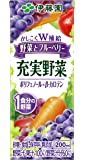 伊藤園 充実野菜 野菜とブルーベリー (紙パック) 200ml×24本