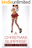 A Christmas Surprise: A Sexy Holiday Tale