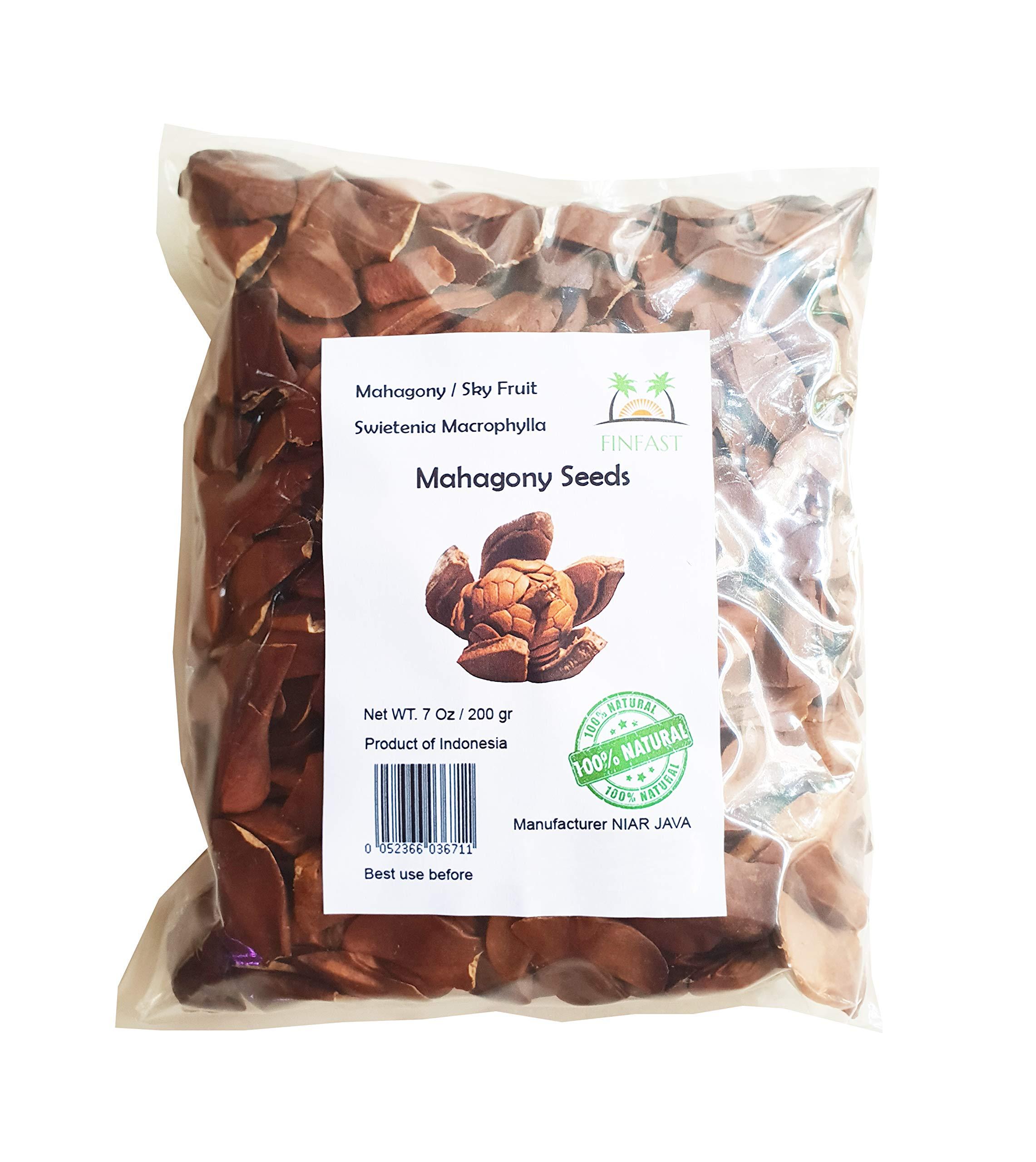 FINFAST 200 Grams Mahagony Seeds (Swietenia Macrophylla)