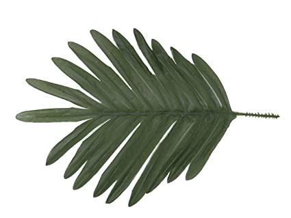Amazon Com Package Of 24 Silk Palm Leaves Arts Crafts Sewing