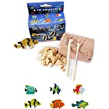 Tropical Fish Excavation Kit
