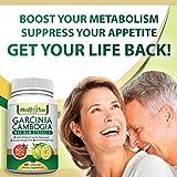 Pure Garcinia Cambogia Premium Extract 80% HCA