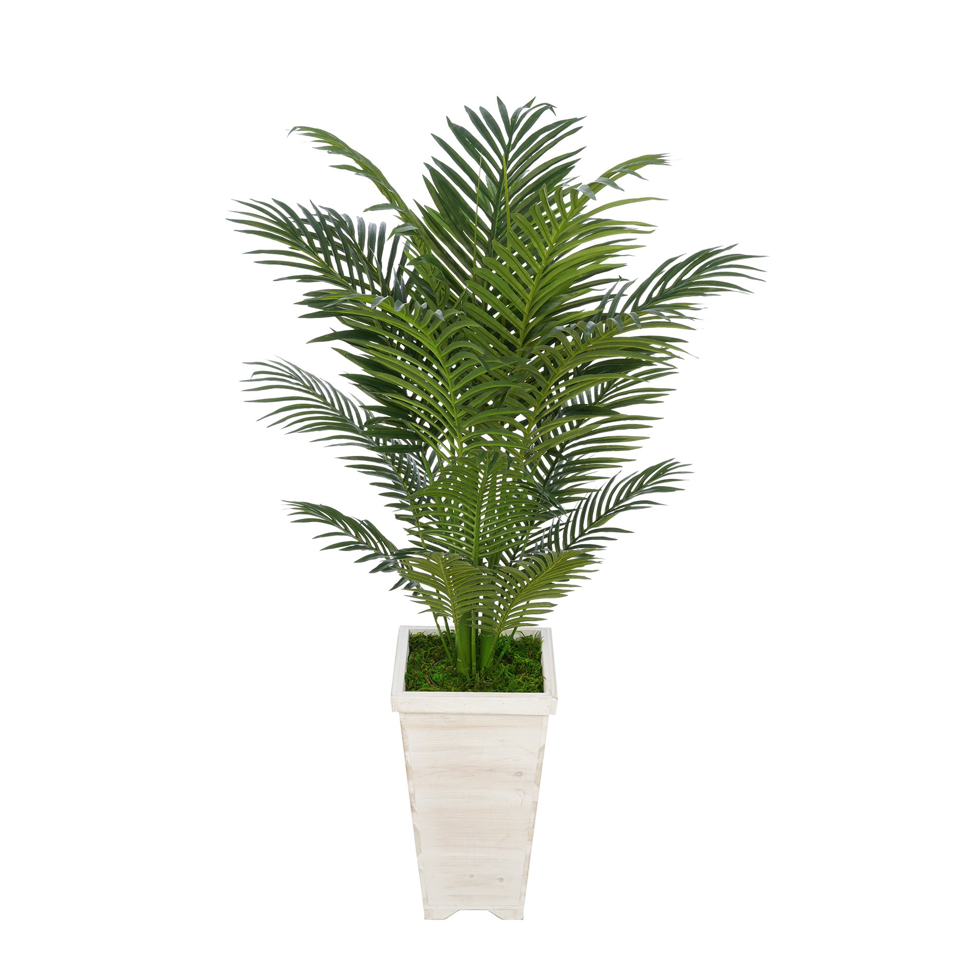 Artificial 4-1/2 foot Areca Palm in Tall Washed Wood Planters (White)
