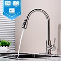 Hpbge Single Handle Pull Out Kitchen Faucet, Single Level Brushed Nickel  Stainless Steel Kitchen Sink