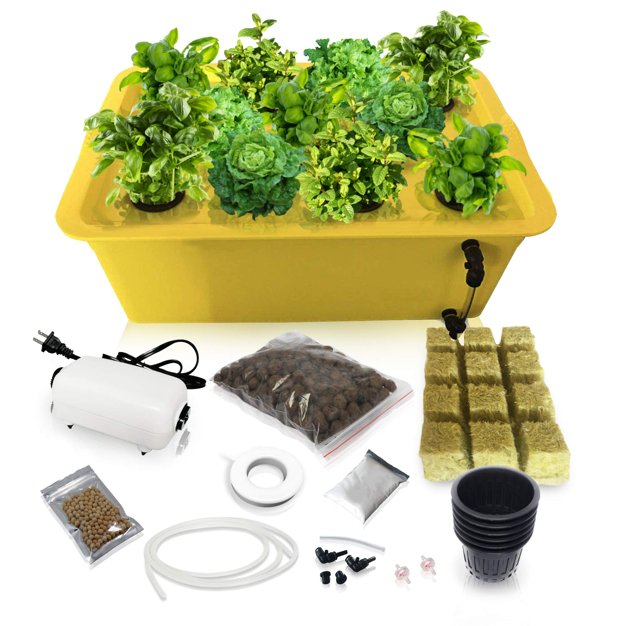 Herb Garden Starter Kit Indoor - Hydroponics Growing System with Nutrients and Herbs Seeds - Heirloom Non-GMO Cilantro, Parsley, Basil, Thyme, Mint - Complete All in One Ready to Grow (Herb Kit) by SavvyGrow (Image #1)