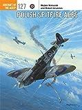 Polish Spitfire Aces.