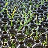 casa pura Heavy Duty Rubber Ring Grass Mat, 16 mm (60 x 80 cm)   Playground Garden Safety Matting   Multiple Size Options