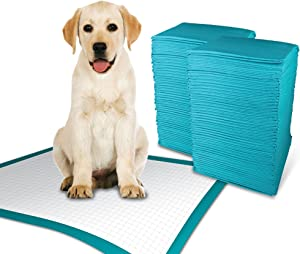 Simple Solution Training Puppy Pads | Extra Large, 6 Layer Dog Pee Pads, Absorbs Up to 7 Cups of Liquid | 28x30 Inches