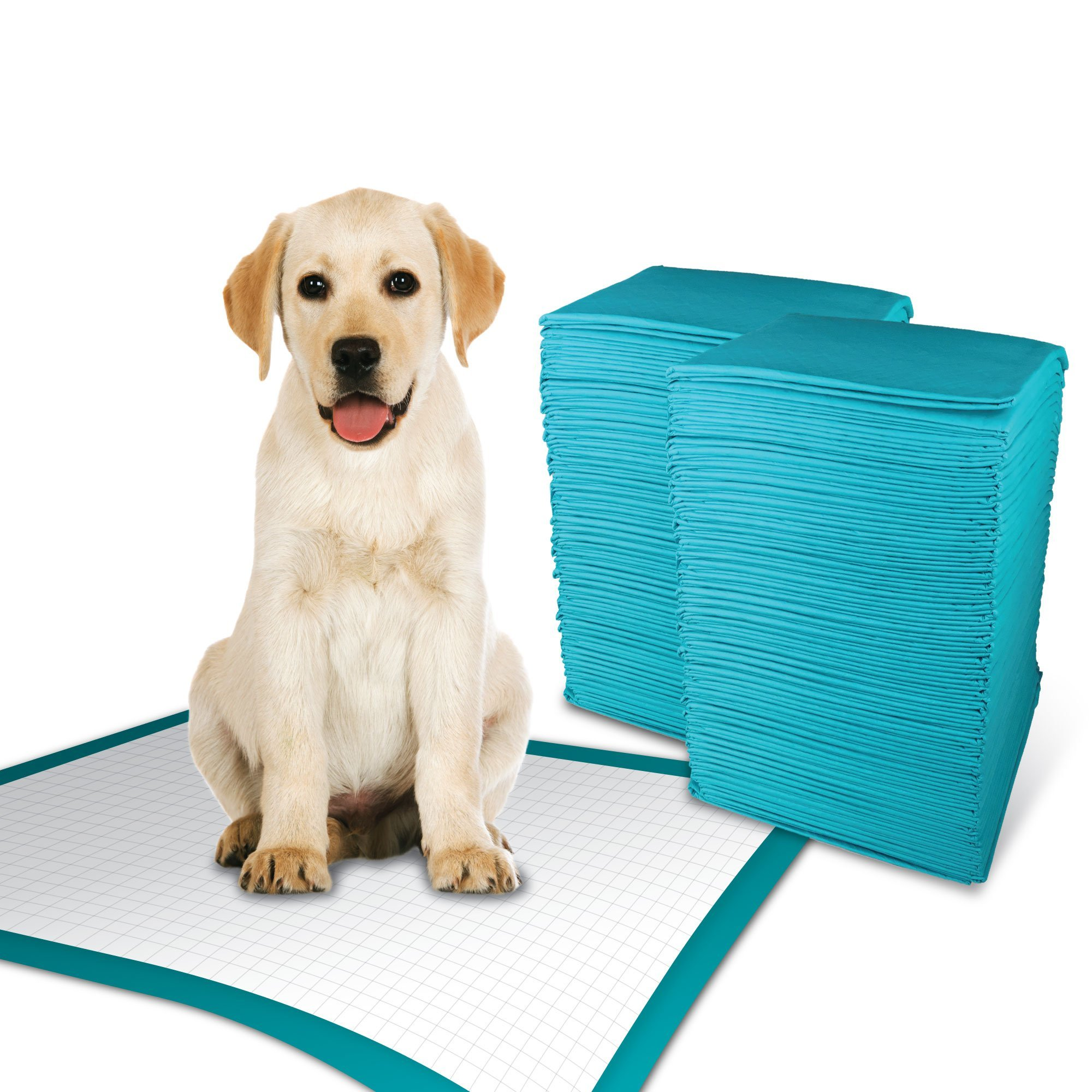 Simple Solution Training Puppy Pads | Extra Large, 6 Layer Dog Pee Pads, Absorbs Up to 7 Cups of Liquid | 28x30 Inches, 100 Count by Simple Solution