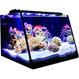 Full View Aquarium - Lifegard Aquatics