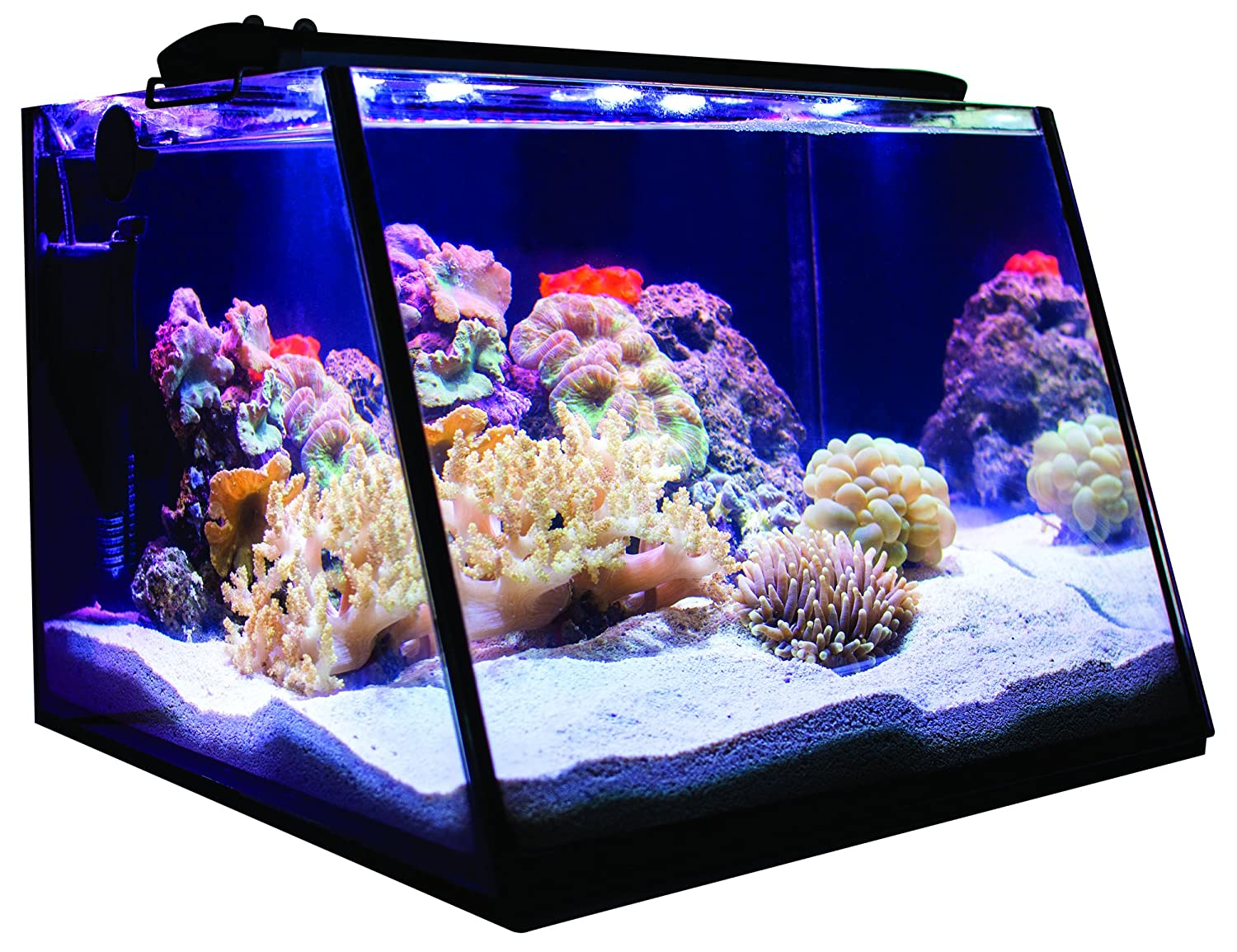 Lifegard Aquatics R800204 Full-View 5 Gallon Aquarium with LED Light Built-in Back Filter