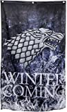 """Game of Thrones Wall Banner (30"""" by 50"""") (Stark Winter Is Coming)"""