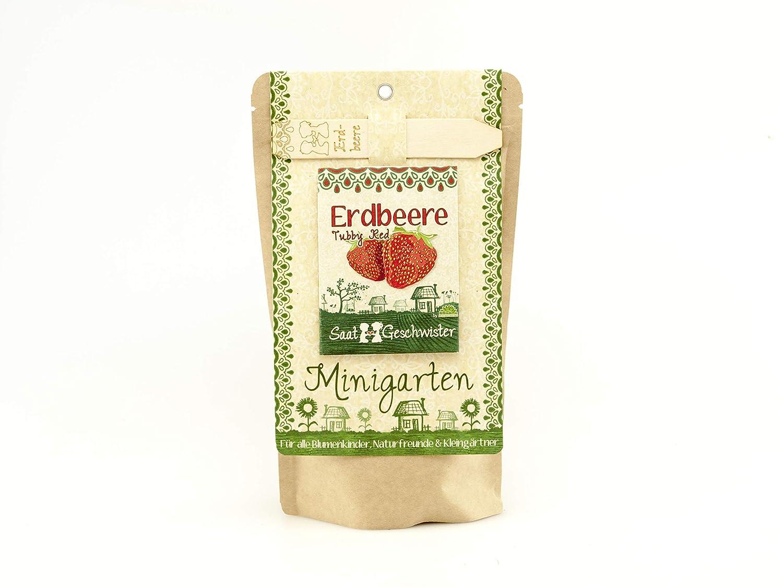 Die Stadtgärtner Minigarten ErdbeereTubby Red | Komplettes Anzuchtset für geschmacksintensive Erdbeeren | Gesiebte Erde, bestes Saatgut & eine ausführliche Anleitung