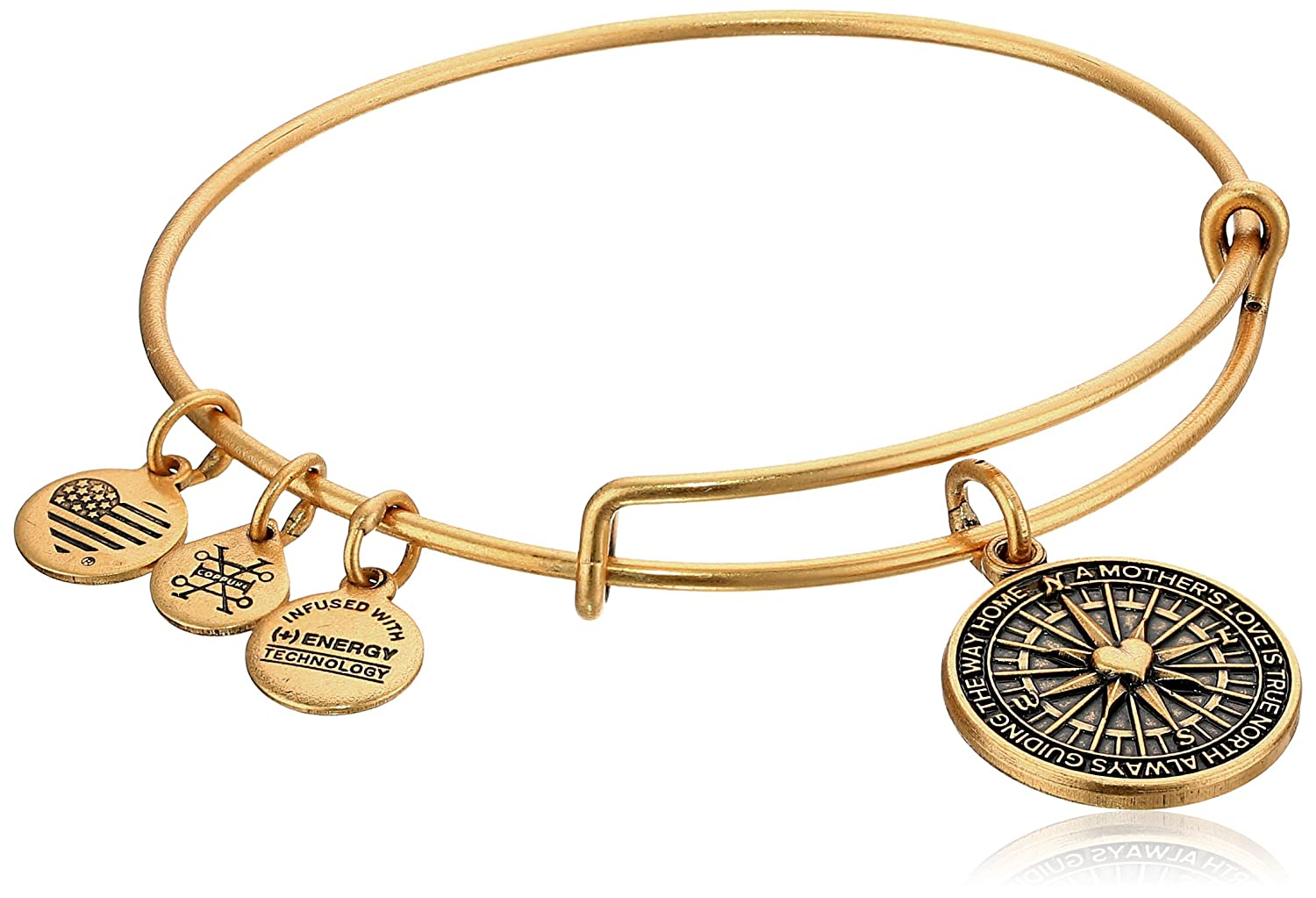 Amazon.com: Alex and Ani True Direction Rafaelian Gold Bangle ...