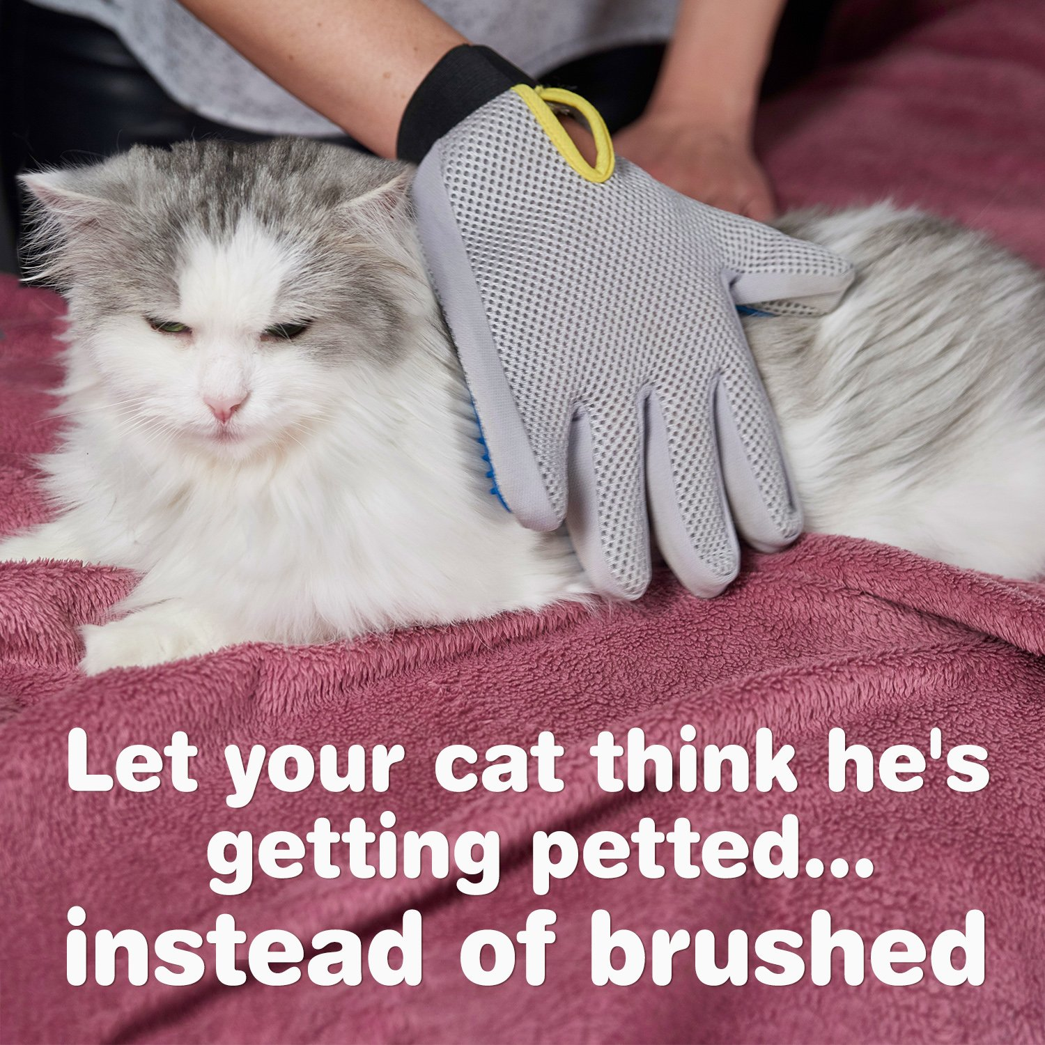 Pet Grooming Glove - Enhanced Five Finger Design - for Cats, Dogs & Horses - Long & Short Fur - Gentle De-Shedding Brush - Your Pet Will Love It (Right) by Pat Your Pet (Image #5)