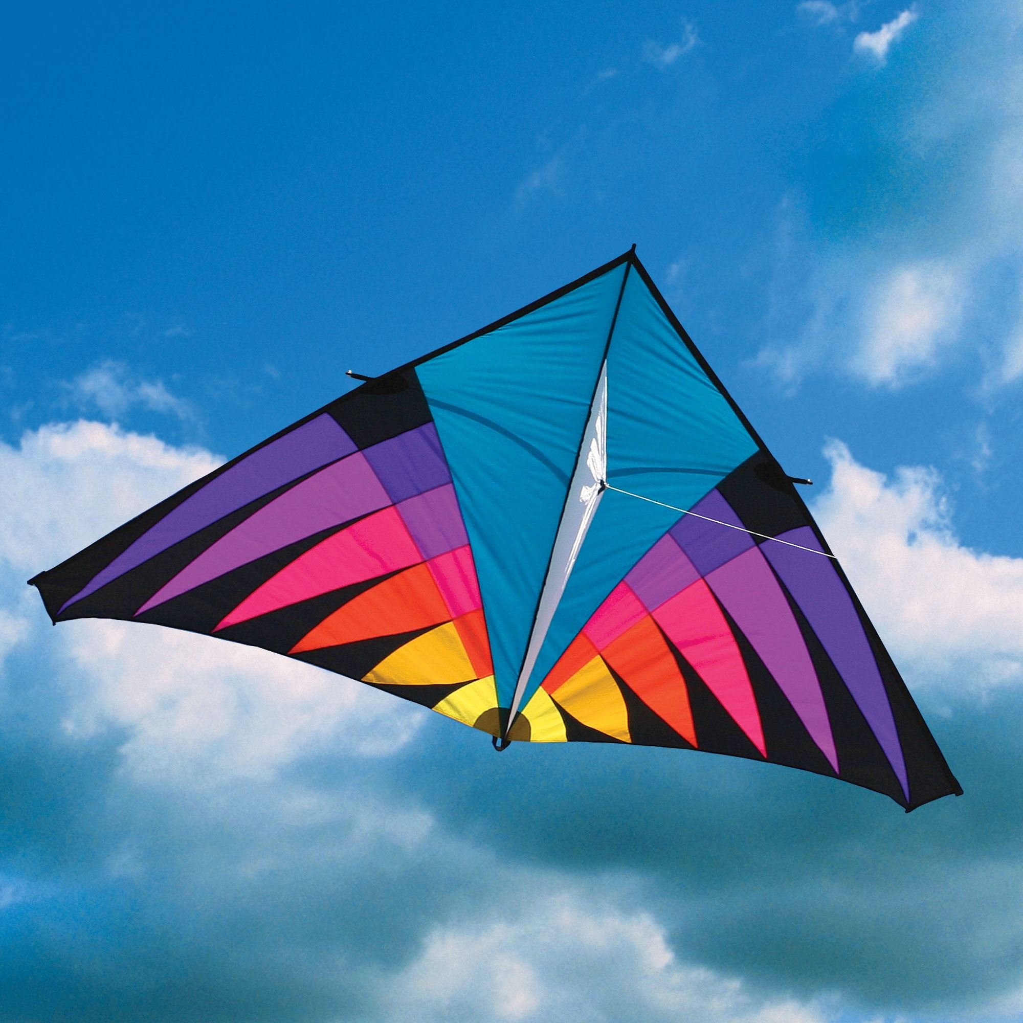 Into The Wind 12-ft Highlighter Riviera Single Line Delta Kite by Into The Wind