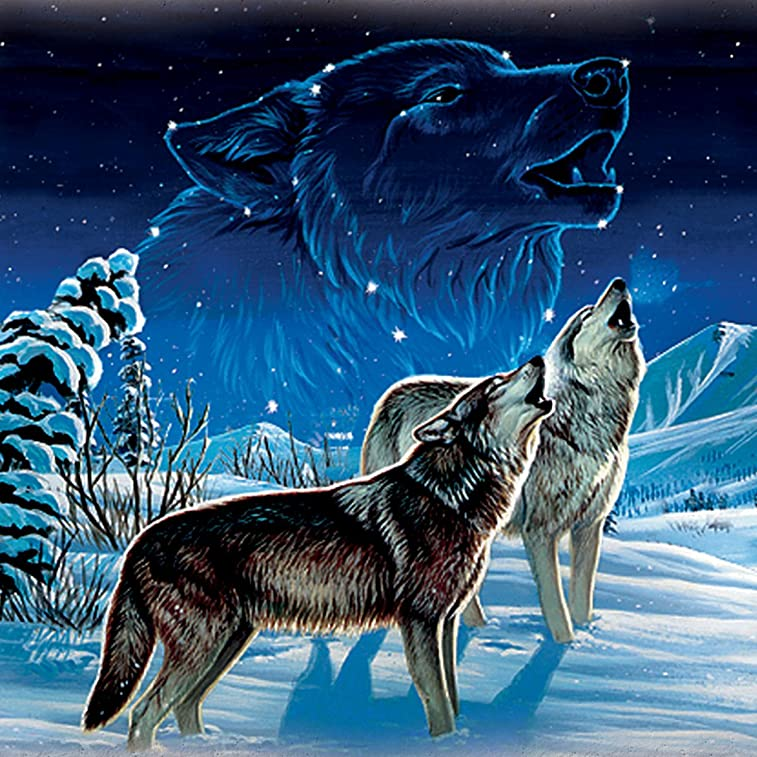 Cynthie Fisher Wolf Art Dreamcatcher Wall Plaque Lights Up and Glows in the Dark by The Bradford Exchange