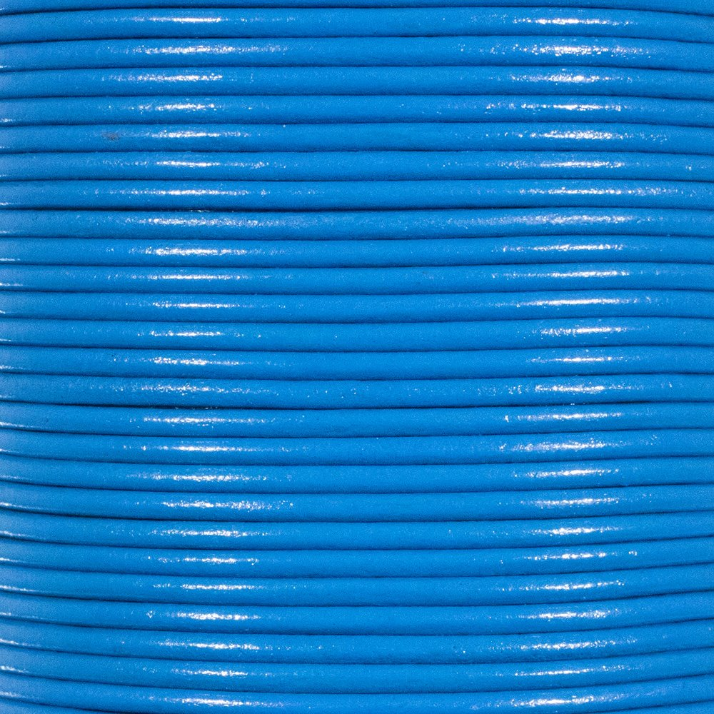 Blue 2mm Genuine Round Leather Cord Strips for Bracelets Beading Necklaces 10 Yards // 9.1 Meters and Other Jewelry Making