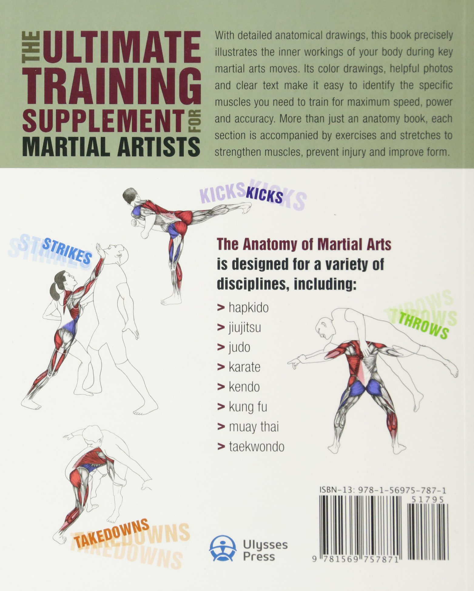 Mixed Martial Arts Anatomy Pdf