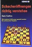 Schacheroffnungen Richtig Verstehen