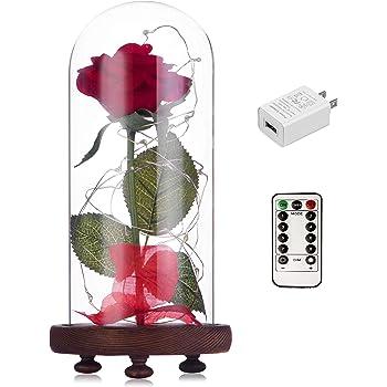 Amazoncom Louis Garden 17 Artificial Silk Flowers Fake