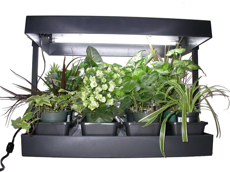 Growlight Complete Indoor Garden, Self Watering, Black