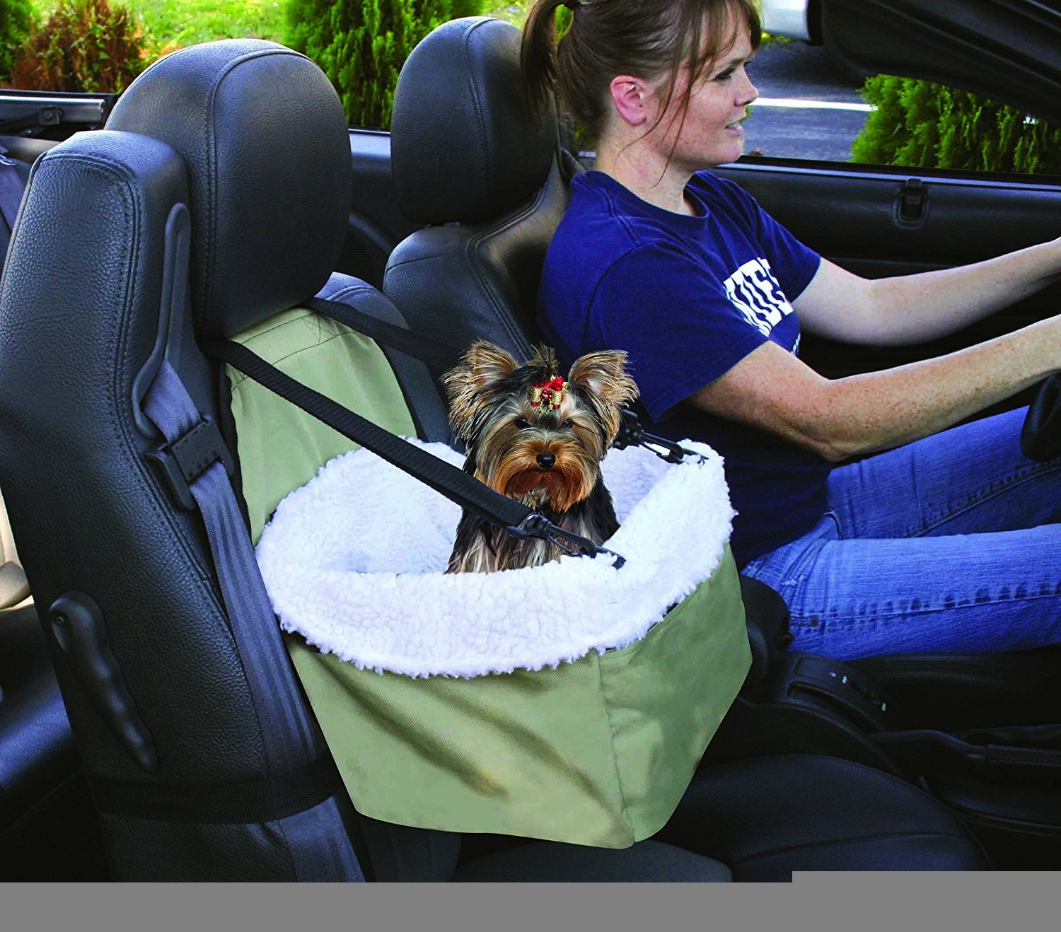 SHUYUE Travel Animals Cats Dogs Matter Companion Pet Car Booster Seat, Pets Up to 15-24lbs