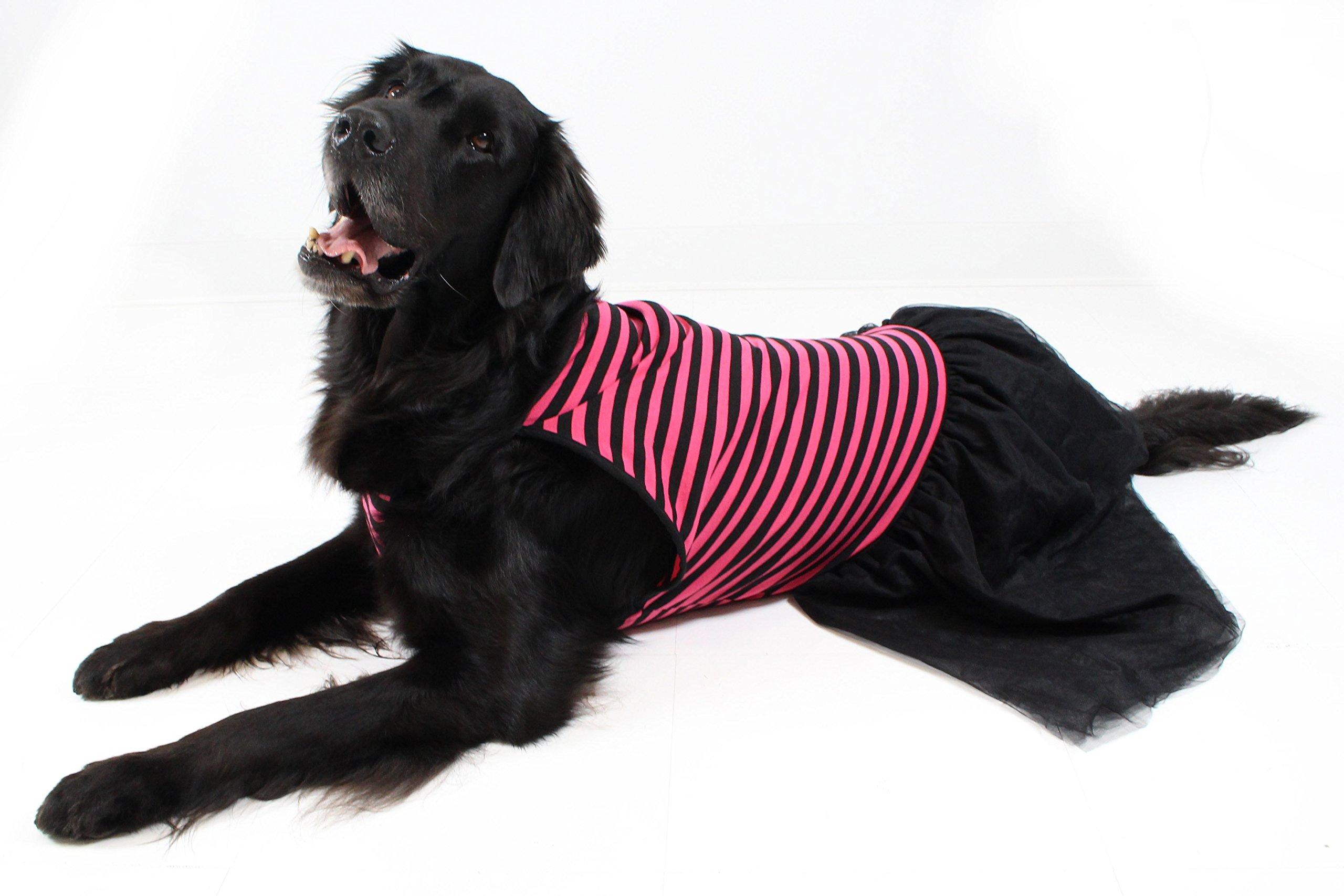 Pink & Black Stripe Tutu Large Dog Dress by Midlee (X-Large)