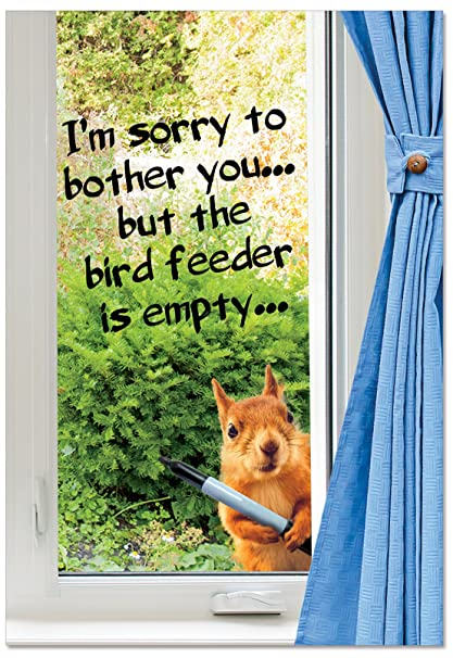 Amazon Empty Bird Feeder Birthday Funny Paper Card Humor