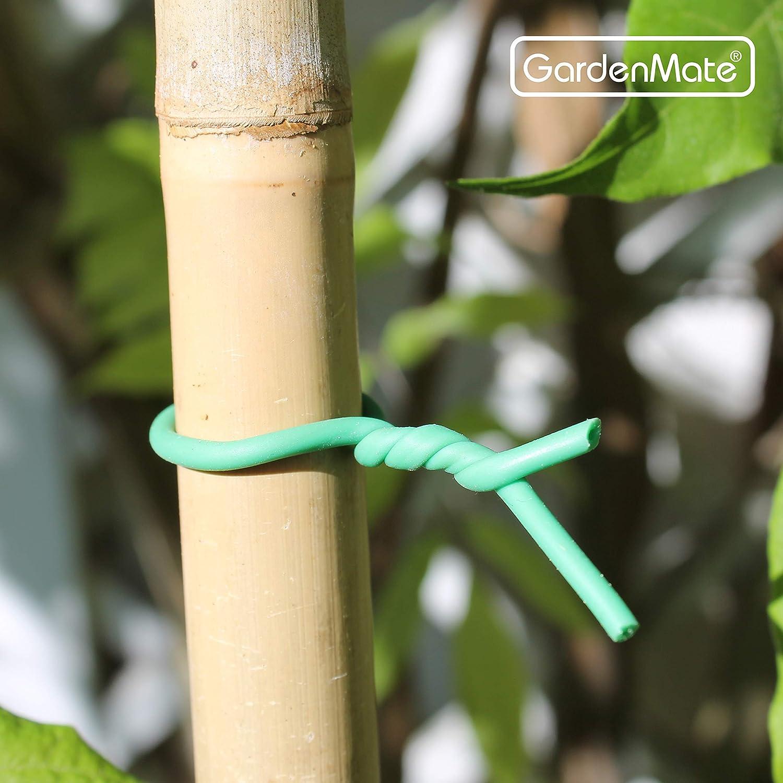 GardenMate Lot de 12 bobines Lien de tuteurage 2,5mm x 10m pour Plantes et arbustes Acier et Caoutchouc