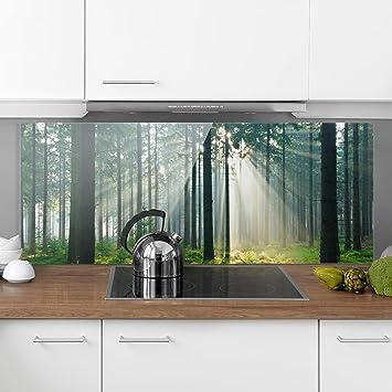 Bilderwelten Spritzschutz Glas - Enlightened Forest - Panorama Quer ...