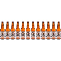 Pack Découverte - 12 Bières Artisanales Françaises 33cl. - Big Bang Beers - Artisan Brasseur - Interstel'Loire, Alpha Lyrae, Solar Flare, Red Shift, The Second Law, Andromeda, Rogue Planet