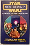 The Rise of the Shadow Academy