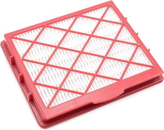vhbw Filtro de aspirador para Lux 1, 1 Classic, 1 Royal, Classic, D 800 - D 899, D 820, Royal filtro Hepa: Amazon.es: Hogar
