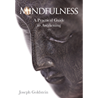 Mindfulness: A Practical Guide to Awakening (English Edition)