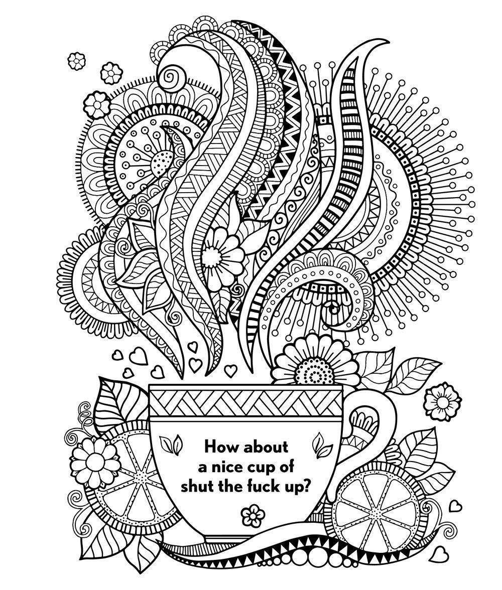The Swear Word Coloring Book Amazonca Hannah Caner Books